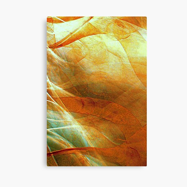 Unchained Illusion Canvas Print