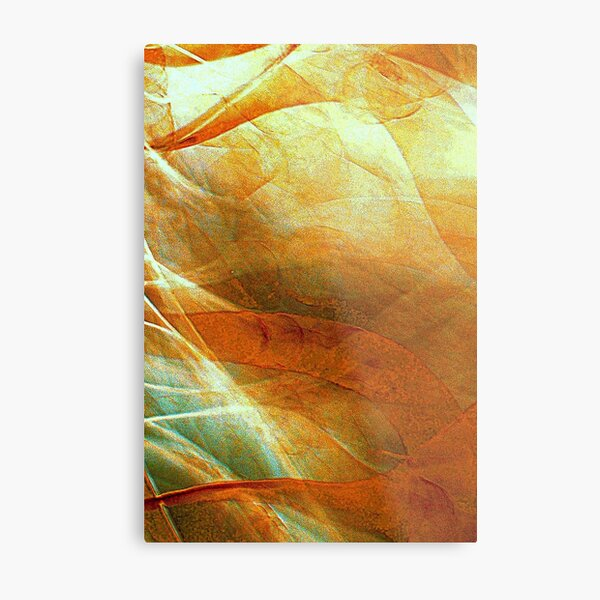 Unchained Illusion Metal Print