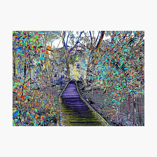Boardwalk Art, Abstract Graphic Photographic Print