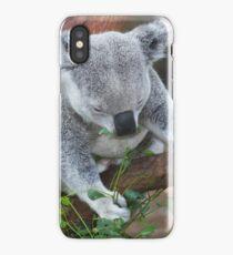 Koala Bear iPhone Case/Skin