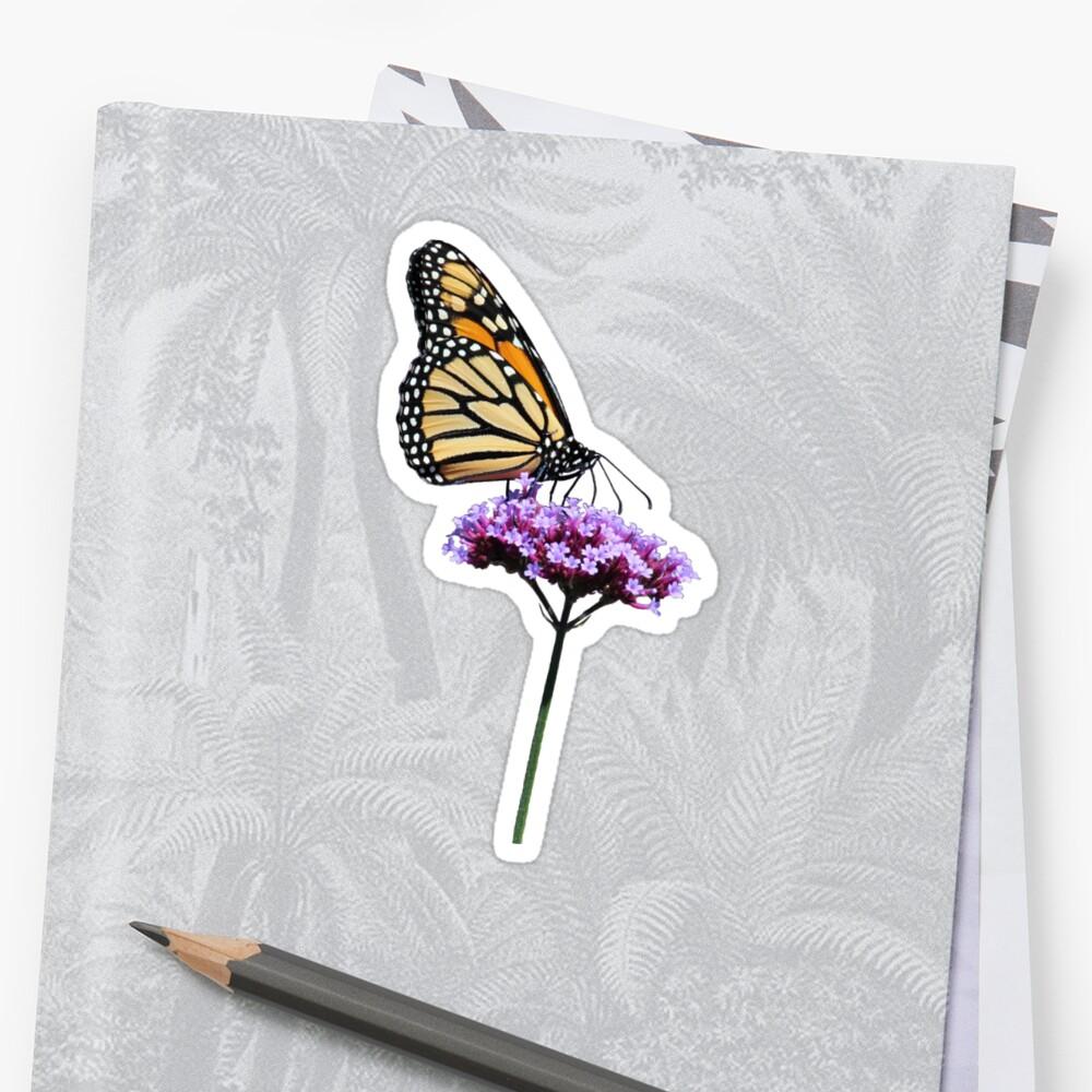 Monarch on mauve t-shirt/leggings/merchandise by hummingbirds
