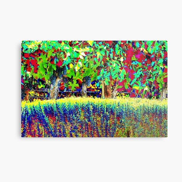 Vineyard Art, Colourful Graphic Metal Print