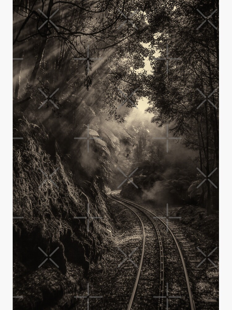 Steam and rainforest by MelBrackstone