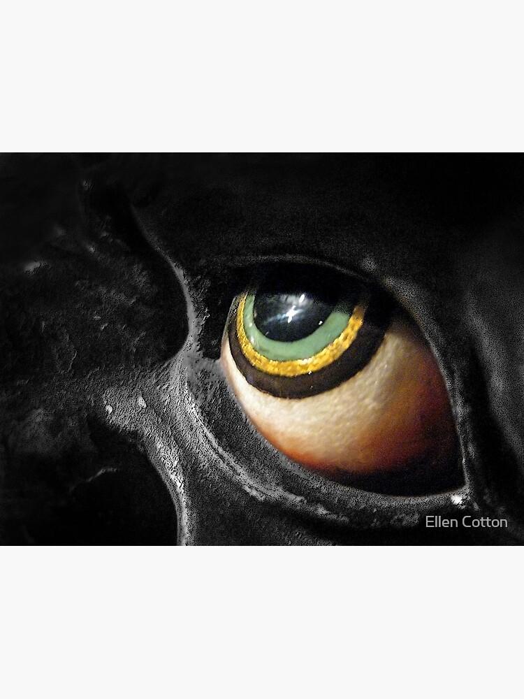 The Eye by ellcot