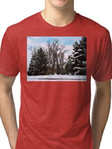 Trees in Snow Tri-blend T-Shirt