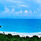 Panarama of Horseshoe bay Bermuda by buddybetsy