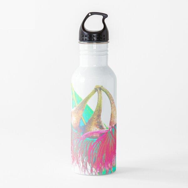 Gum Nut Flowers Art, Floral Graphic, Water Bottle