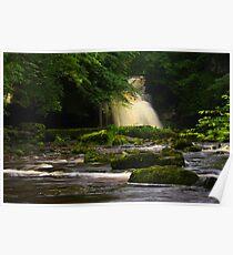 Cauldron Falls, Walden Beck, North England Poster