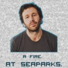 A Fire At Seaparks! by Mollie Taylor