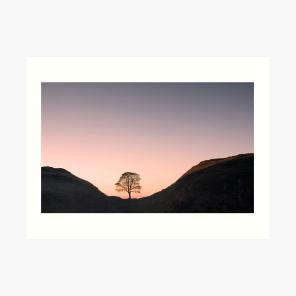 Hadrian's Wall at Sycamore Gap Art Print