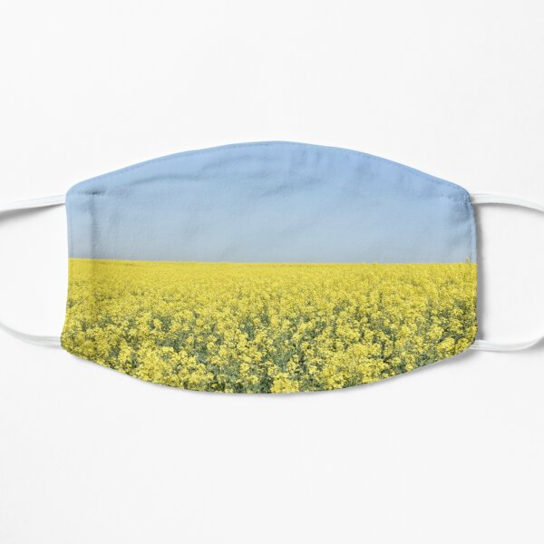 Rapeseed field, Tillingham, Essex Mask
