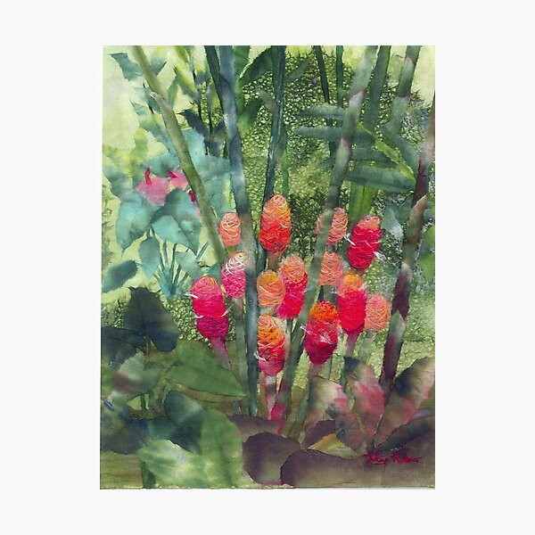 Beehive Ginger Photographic Print