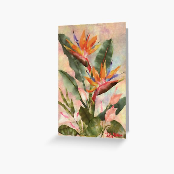 Bird of Paradise with Anthurium Greeting Card