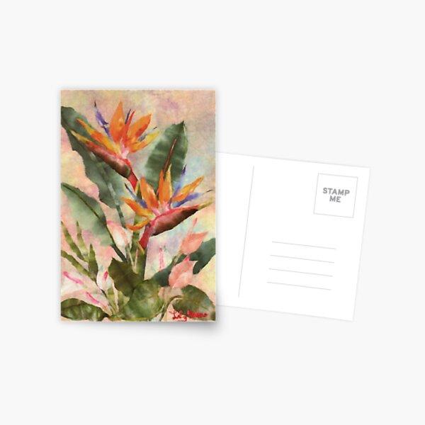 Bird of Paradise with Anthurium Postcard