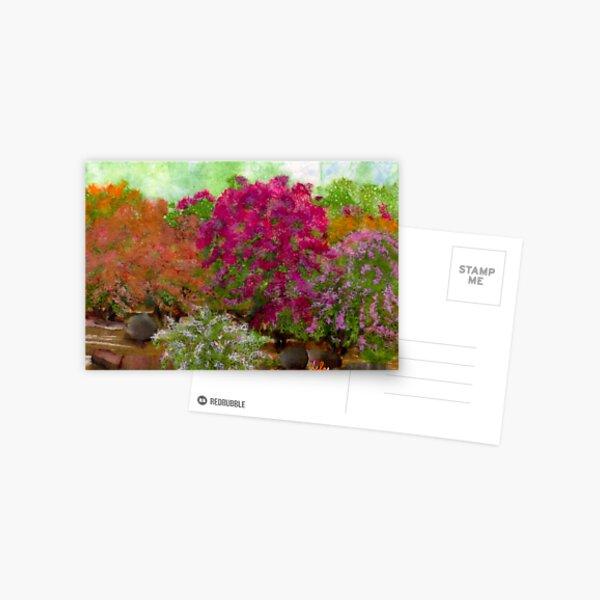 Bougainvillia Postcard