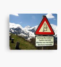 Warning Marmot! Canvas Print