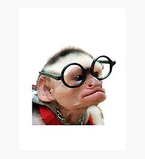 Funny Monkey Photographic Print