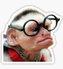 Funny Monkey Sticker