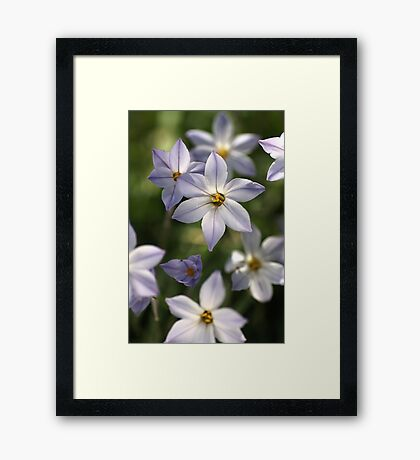 She Dances with Friends Framed Print