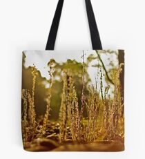 A grassy sunset 2 Tote Bag