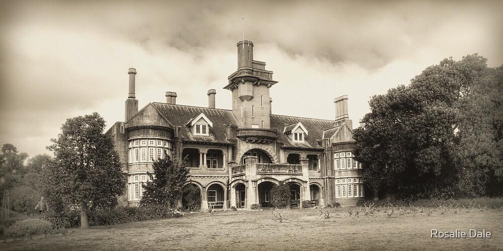Iandra Castle ~ Greenthorpe NSW by Rosalie Dale