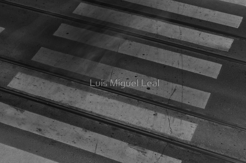 Staining Shadows by Luis Miguel Leal