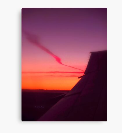 Wing at Sunset Canvas Print