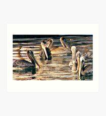 Pelicans of love Art Print