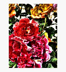 Surrealist Roses  Photographic Print