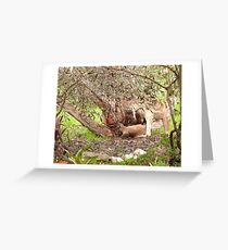 Joey slides out to explore! Greeting Card