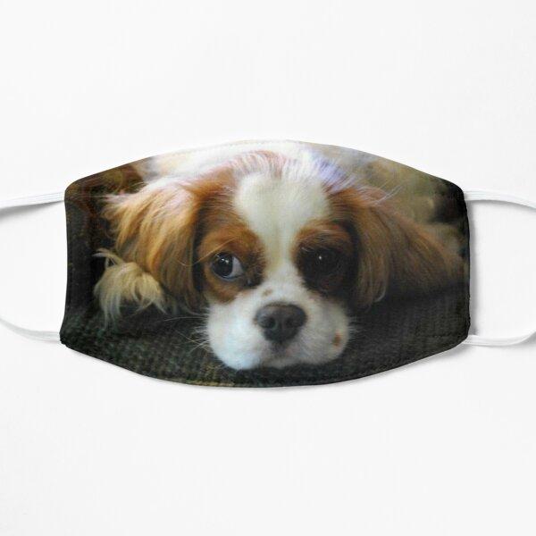 Pensive Pup Flat Mask