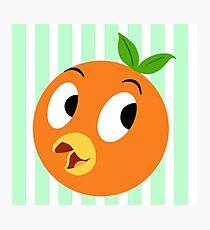 Lil Orange Bird Photographic Print