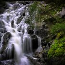 Cascading Waterfall by Jill Fisher
