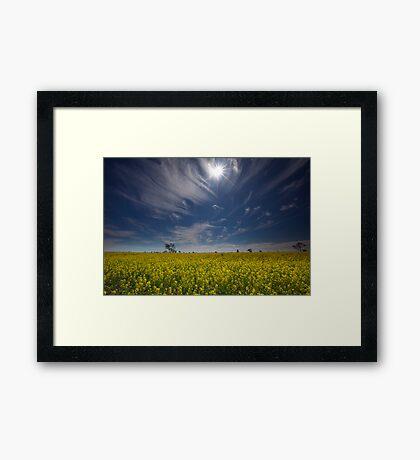 Under the Outback Sun Framed Print