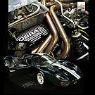Ford GT40 MKII by Mark Buchanan