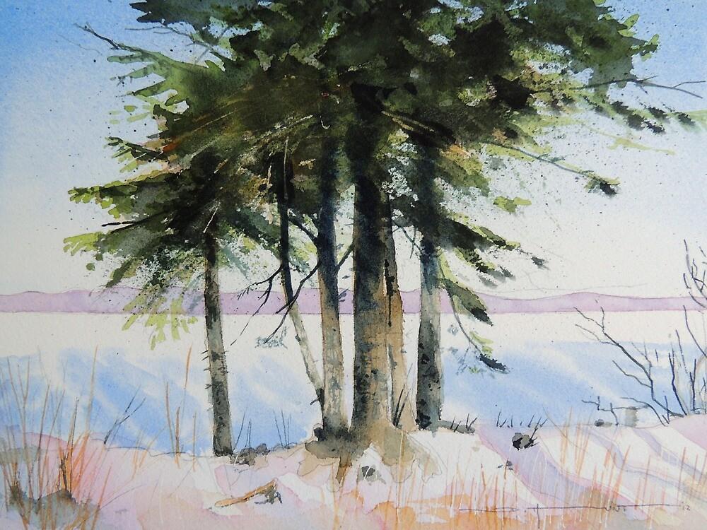 Lumiere d'Hiver by Douglas Hunt