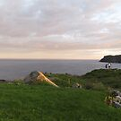 Evening hike in St. Anthony by hummingbirds