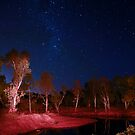 Star Light by James mcinnes