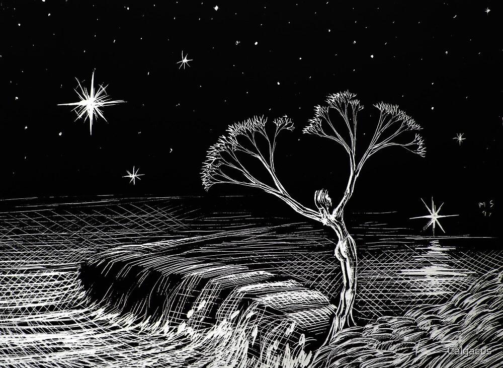 she tree by Calgacus