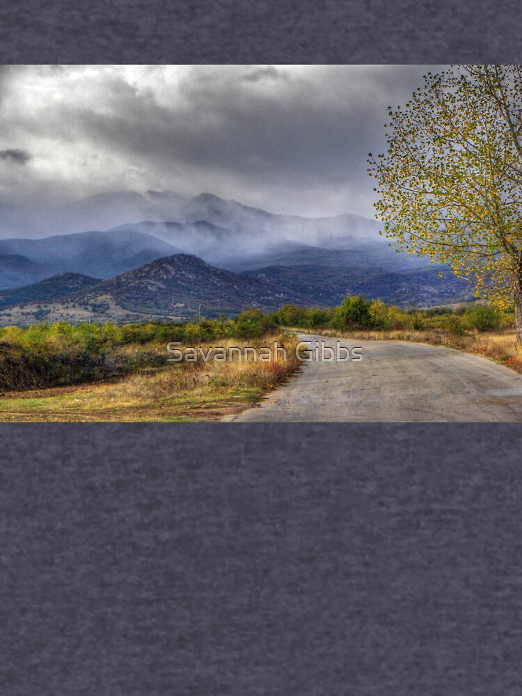 Road to Mountains by venny