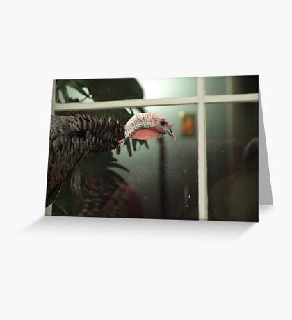 Peeping Tom Greeting Card