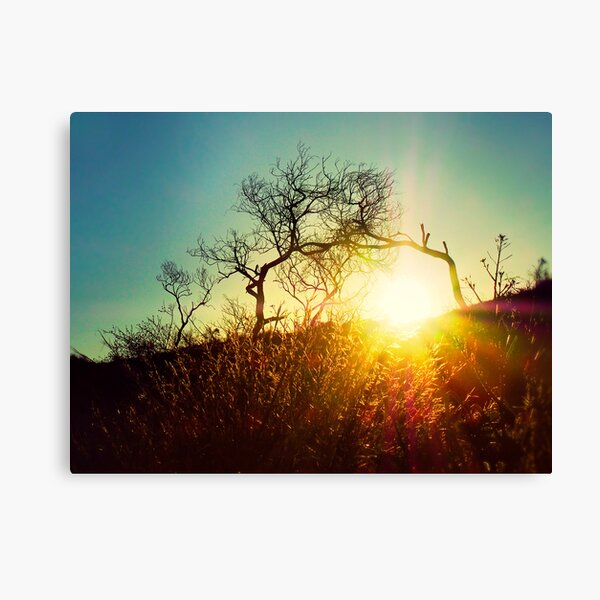Here comes the sun..... Canvas Print