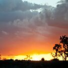 Yuma Arizona Sunset by barnsis