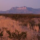 Guadalupe Mountains at Sundown by seymourpics