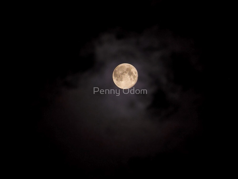 Blue Moon Over Texas by Penny Odom