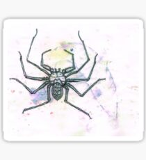 Moldy Amblipygid Sticker