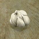 Garlic  by Jess Meacham