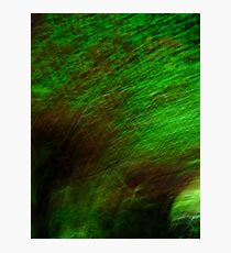 Green Abstract Photographic Print