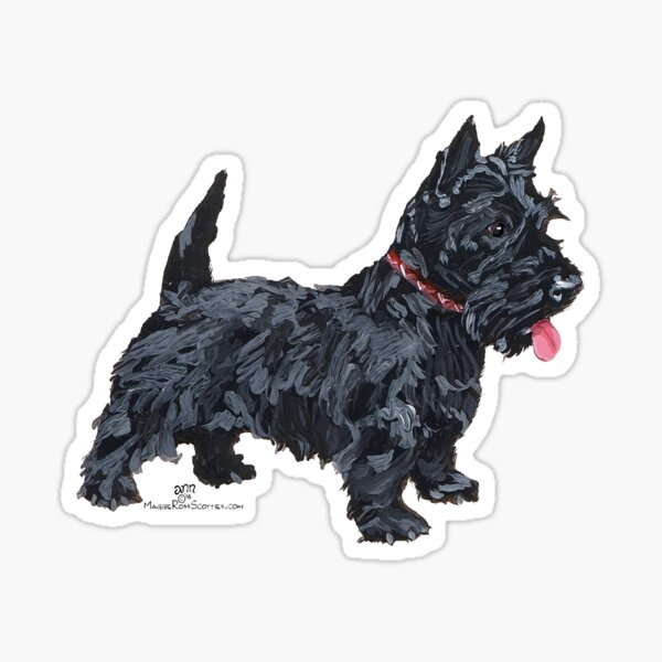 Scottish Terrier Ready to Play Sticker