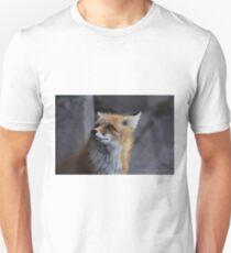 Looking Innocent T-Shirt